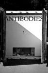 Antibodies 1