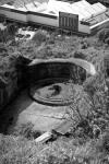 Fort Buckley 4