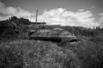 Fort Dorset 1