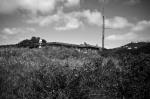 Fort Dorset 8