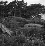 Fort Balance-9