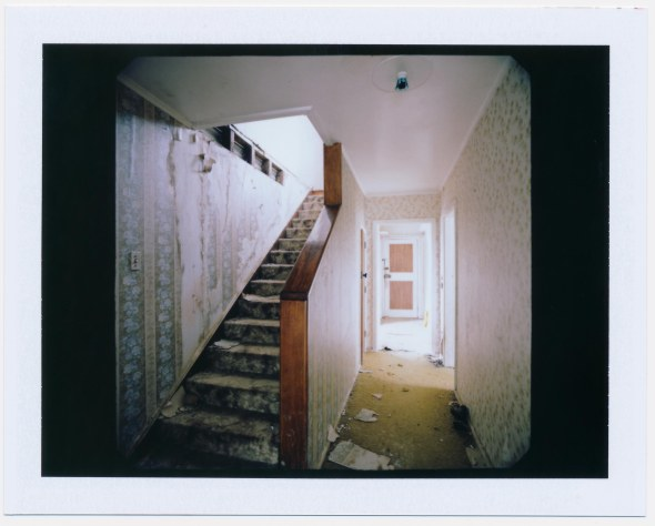 Polariod-3